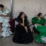 Un año desde la última temporada flamenca